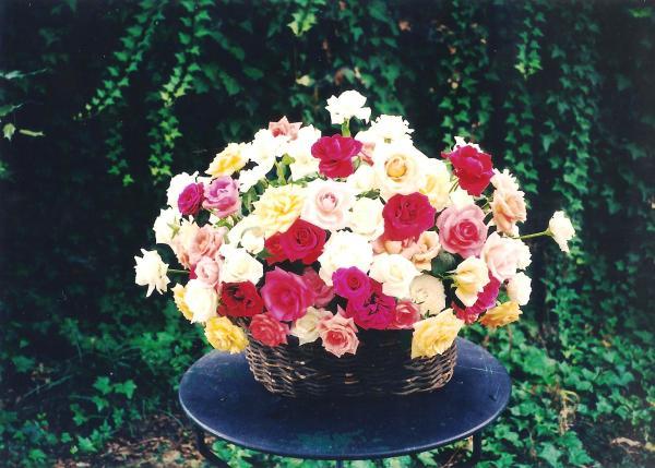Mother's flower arrangments 001