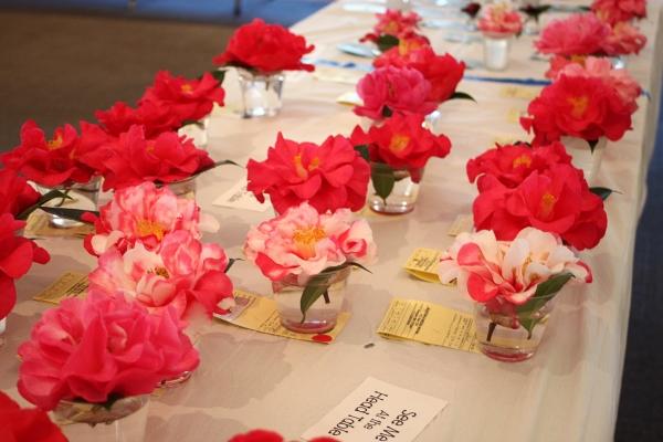 Southeast Alabama Camellia Society S 2014 Camellia Show