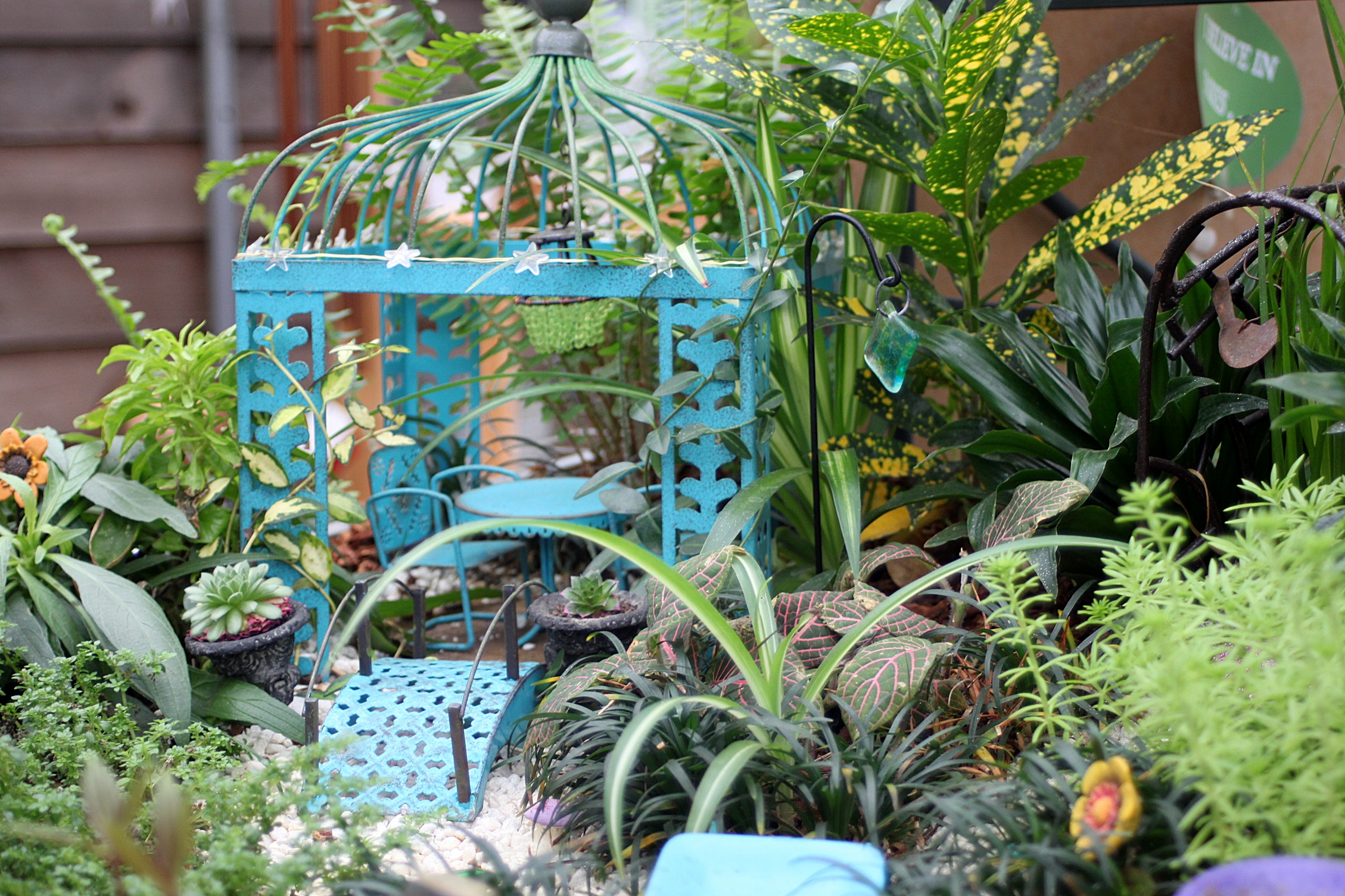 the magic of fairy gardens beautifulgardener